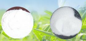 高钙粉在塑料袋领域中使用的范围